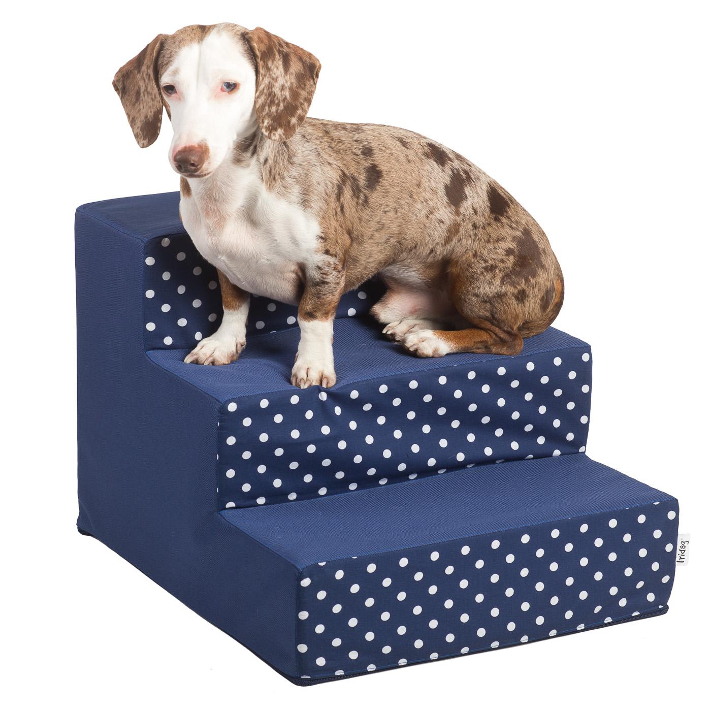 Schody pro psy, no. 30, modrá s puntíky, 1 malé