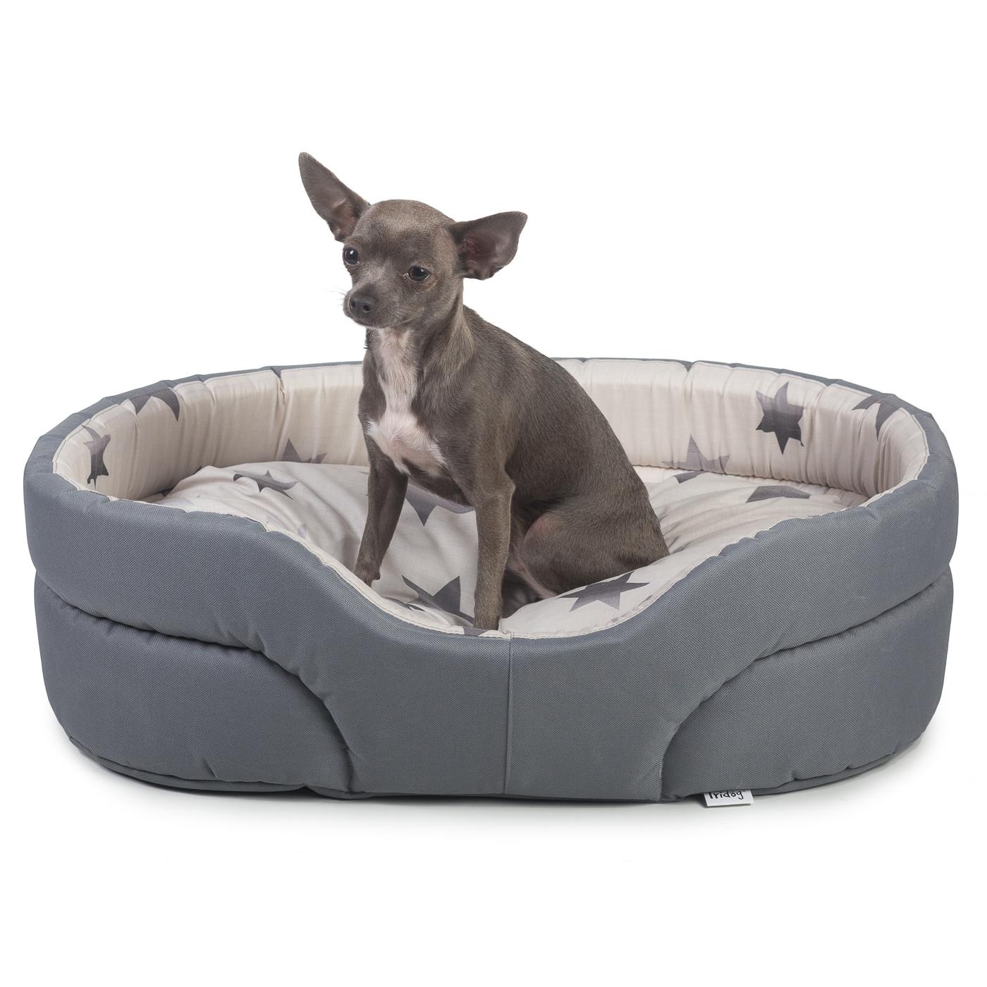Pelech pro psy, no. 41, hvězdičky - č.6 Middle