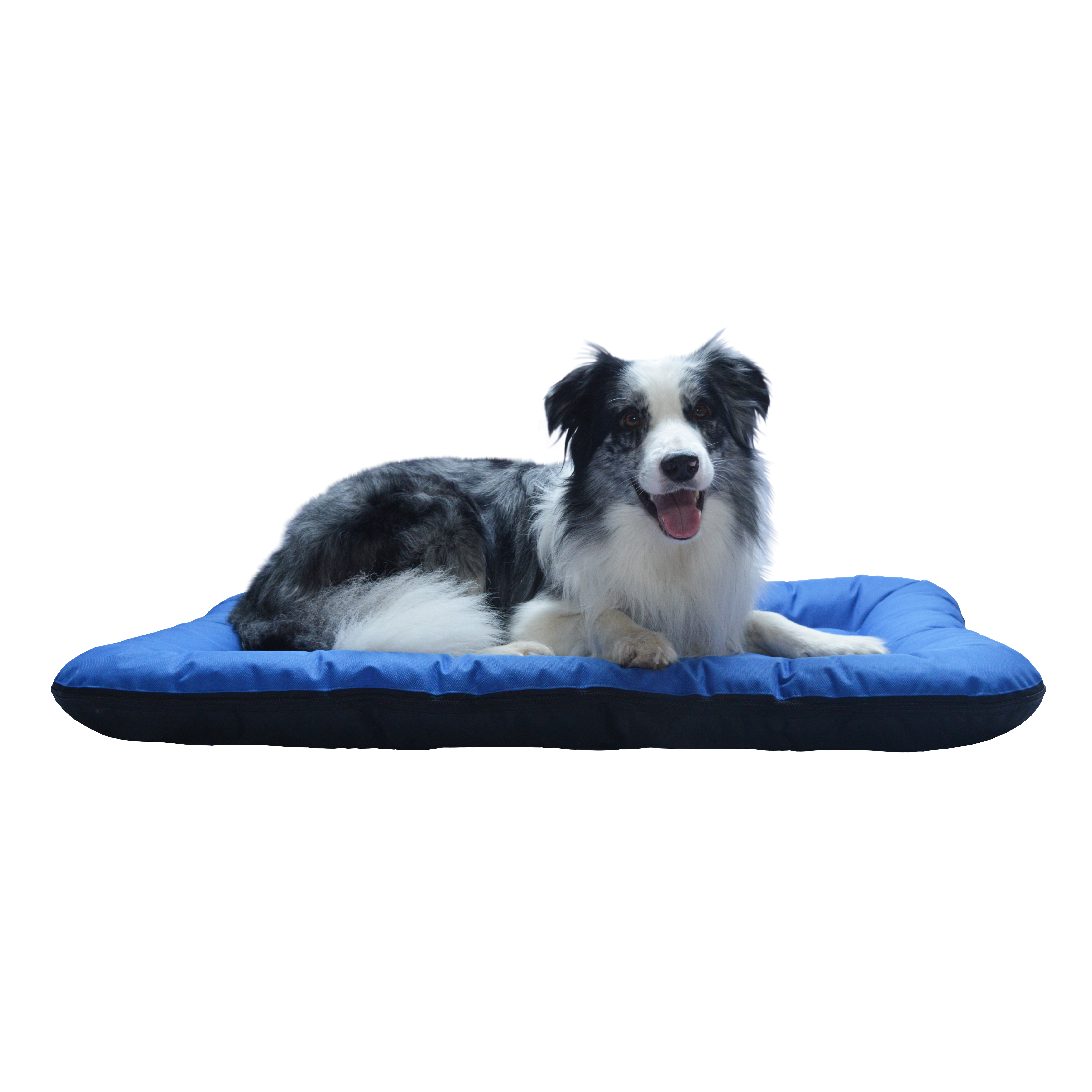 Matrace pro psy no. 2, modrá, vel. 3