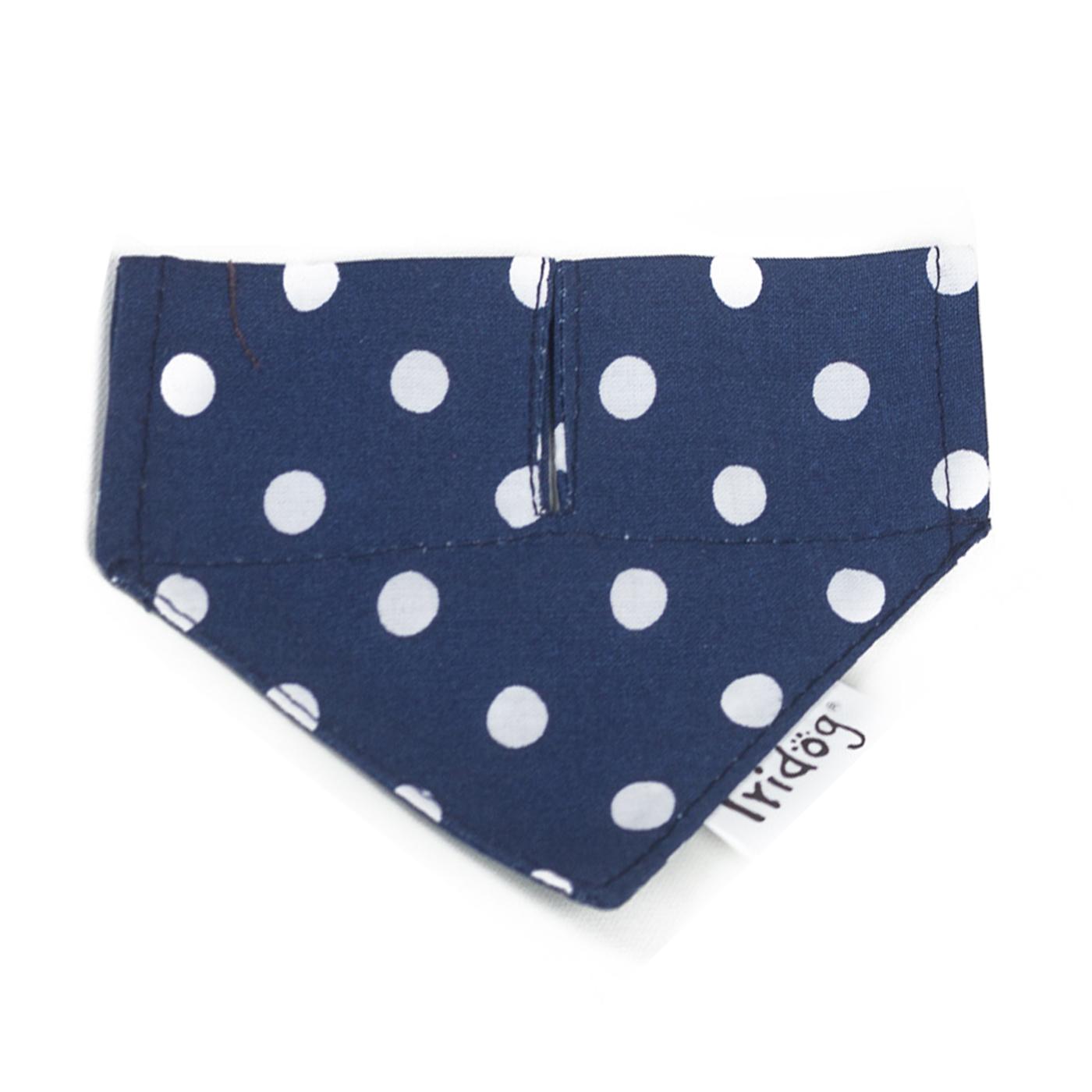 Šátek pro psy, no. 30, modrý s puntíky